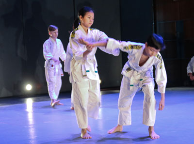 junioriaikido